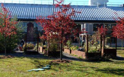 Civic Gardens at Lansdowne Park