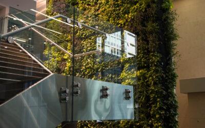 Jim Flaherty Building Vertical Garden